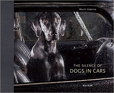 The Silence of Dogs in Cars, Martin Usborne, 2013