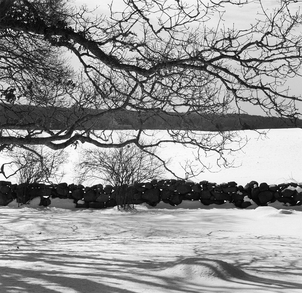 Mariana Cook ,   My Wall in Snow, Chilmark, Massachusetts  ,  2003     Gelatin silver print ,  15 1/8 x 15 in.     Signed, dated, titled & numbered on verso of mount in edition of 6; mat size: 30 x 24